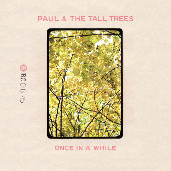 Paul & The Tall Trees Once In A While b/w The Little Bit Of Sunshine BC018-45 Big Crown Records